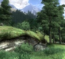 Una scena di Oblivion IV